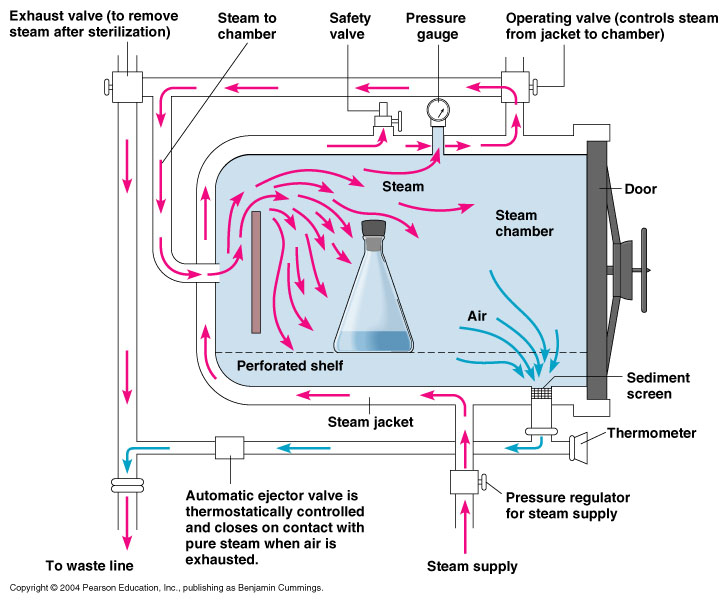 engin1000 solar powered autoclavethe diagram below outlines the process by which a commercial autoclave would be used to disinfect lab equipment